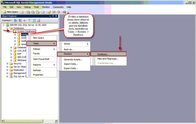 Vstup do obnovy SQL databázy zo zálohy